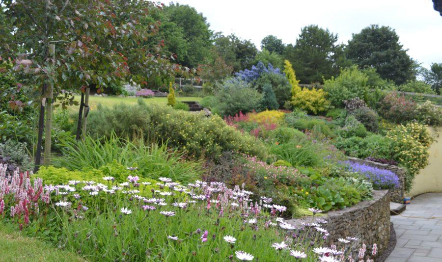 Photo of garden to promote gardening club