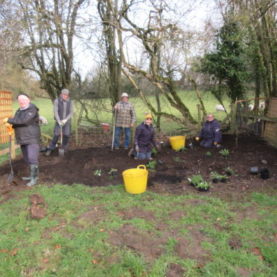 Photo of volunteers planting the butterfly garden